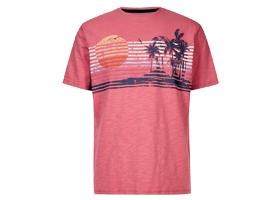 Sıfır Yaka Desenli T-Shirt