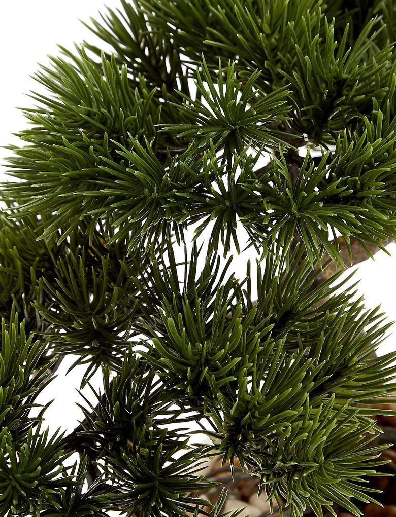 Dekoratif Bonsai Ağacı
