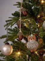 Renksiz Baykuş Cam Çam Ağacı Süsü