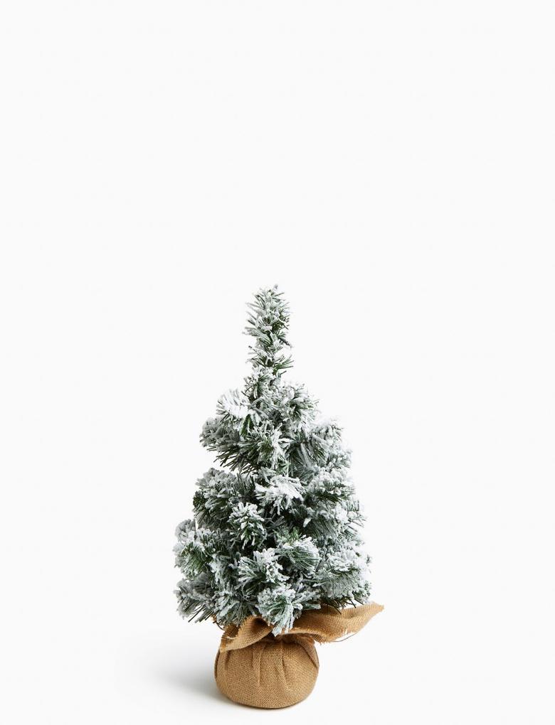 Ev Beyaz Karlı Çam Ağacı