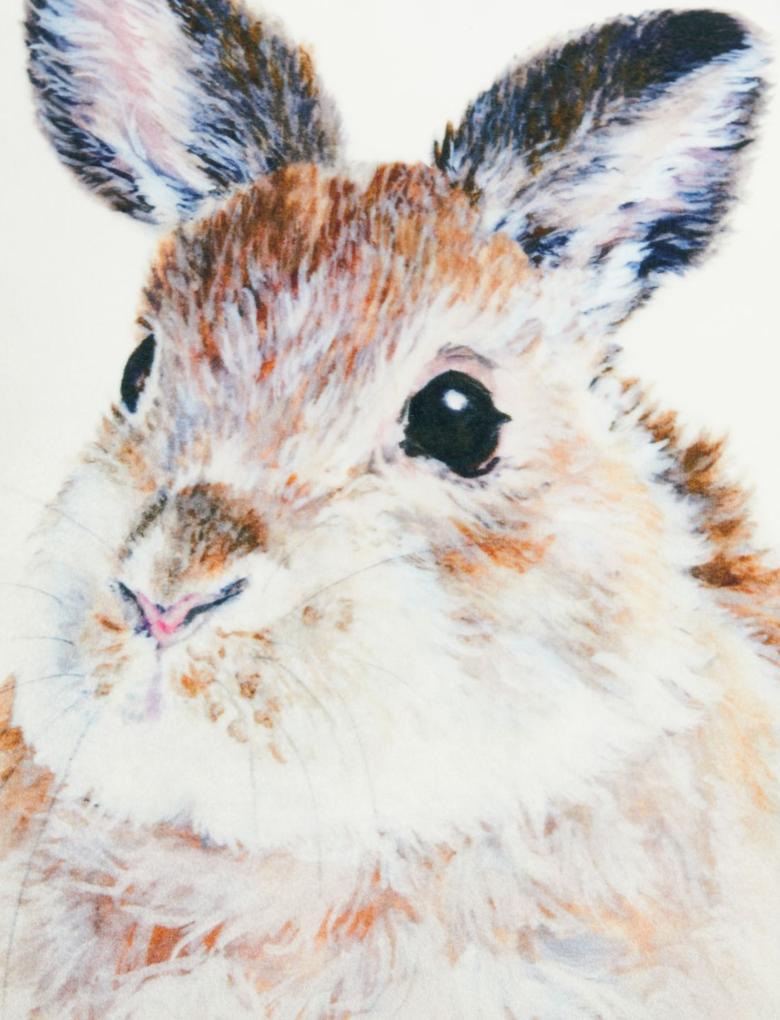 Ev Gri Tavşan Desenli Dekoratif Yastık
