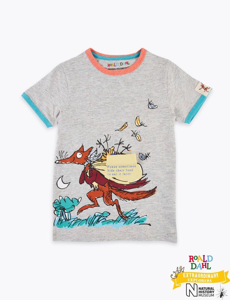 Erkek Çocuk Gri Roald Dahl™ & NHM™ Desenli T-Shirt